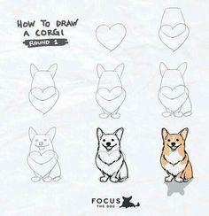 cadenceabsolutely: My new ig series: How to Draw… A Corgi ;P Obtain your best Corgi equipment exclusively at Corgilover. Cute Corgi, Corgi Dog, Corgi Funny, Haski Dog, Mom Funny, Dachshund, Corgi Drawing, Dog Art, Easy Drawings