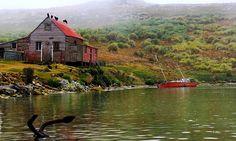 Eyewitness: Falkland Islands