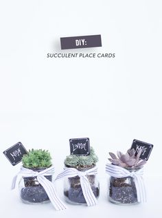 DIY Succulent Place Cards | Photography: Alyssa Rosenheck Photography - alyssarosenheck.com Read More: http://www.stylemepretty.com/living/2014/08/28/diy-succulent-place-cards/