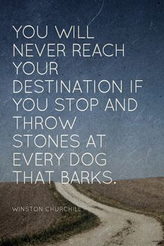 You will never reach your destination if you stop and throw stones at every dog that barks