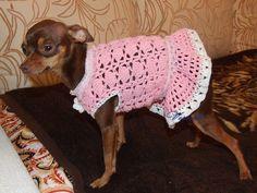 Одежда для собак, ручной работы. Ярмарка Мастеров - ручная работа. Купить Платье для собачки. Handmade. Вязаная одежда для собак