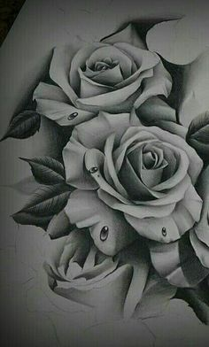 These roses are beautiful Rose Drawing Tattoo, Tattoo Sketches, Tattoo Drawings, Body Art Tattoos, Cool Tattoos, 3d Rose Tattoo, Tattoo Roses, Rose Zeichnung Tattoo, Tattoo Zeichnungen