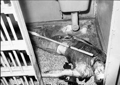 This is one of 37 dead prisoners that happened at Attica State Prison in 1971