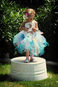 2 year old pics for Sophia - too bad we are in the middle of winter in MN when she turns 2! Gotta do it inside!