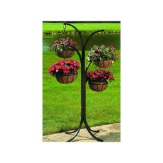 CobraCo – Plant Stand Tree w 12 in. Hanging Baskets in Black CobraCo – Plant Stand Tree w 12 in. Hanging Baskets in Black Hanging Baskets, Hanging Plants, Hanging Basket Stand, Hanger Stand, Diy Hanging, Garden Planters, Garden Art, Basket Planters, Balcony Garden