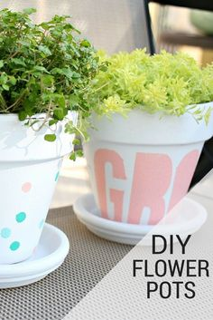 love this cheap way to make over terracotta pots for my flowers!