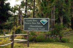 Crystal River Hiking Trail-churchhouse Hammock