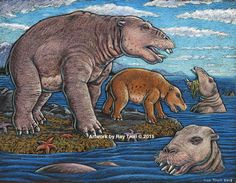 The identification of a new species belonging to the marine mammal group Desmostylia has intensified the rare animal's brief mysterious journey through prehistoric time, finds a new study.  Read more at: http://phys.org/news/2015-10-fossils-mystery-short-lived-toothy-mammals.html#jCp