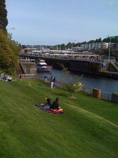 Picnic on the lawn at the ballard locks and watch the boats go through http://www.squidoo.com/seattle-ballard-locks