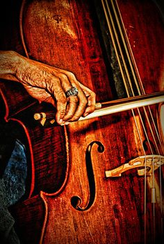 I grabbed this shot of a young cello player during a concert. Usually anything involving human beings don't convert well to HDR. This was an exception to that rule. One of my artistic looking favs!