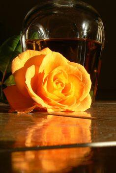 Brandy & Rose (by Off beat Mum)