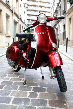 Vespa vintage - Motori italiani - Magasins Paris