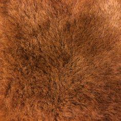 #brown #fur #texture