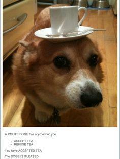 Would you like some tea, m'lady?