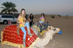 Our Evening Desert Safari in Dubai kicks off with a pickup in the afternoon at your preferred location within the city or in Sharjah.  Deals starting @35 AED please book your tours now  http://dubaisafaridesert.com/  #desertsafaridubai #dubaidesertsafari