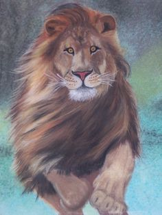If a lion could talk, we could not understand him.  ~ Ludwig Wittgenstein