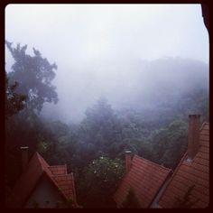 Neblina em Monte Verde