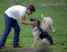Jake Gyllenhaal with Atticus, 2004 - At A Dog Park In LA
