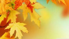 foto de Les 8 meilleures images de fond ecran automne | Fond ecran automne ...