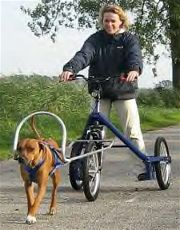 Trike - Zughundesport