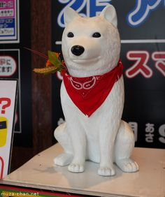Otosan, SoftBank's dog
