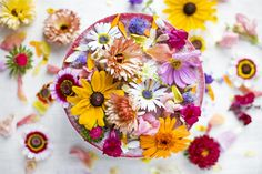 Cooking with plants and flowers! It looks so lovely and delicious! - http://www.tuinieren.nl/tuinnieuws/trend/eetbare-bloemen.html