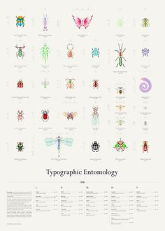Typographic Entomology on Behance