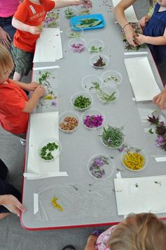 Materials Play – Leaf and Flower Collages at The Eric Carle Museum