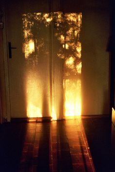 The light...