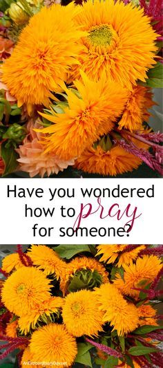 You know someone could use a little prayer, but you wondered how? Learn how to pray this powerful prayer at AnExtraordinaryDay.net. It will be life-changing for you and the person you are praying for. Find out now.