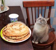 Pancakes #Cute