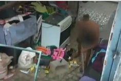 """""""O Grito do Bicho"""": Homem agride cachorro com pauladas em Brasília"""