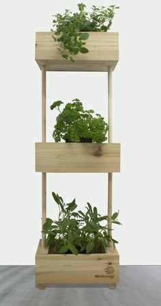 Name: The tiered vegetable garden Garden urban garden Woodworking Table Saw, Woodworking Tools For Sale, Woodworking Projects Diy, Vertical Garden Plants, Wooden Planters, Wall Planters, Tiered Garden, Herb Pots, Diy Furniture Projects
