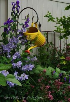 garden goodies, gardening                                                                                                                                                                                 More