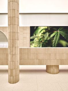 Glass Display Box, Mirror Ceiling, Terrazzo Flooring, Orange Walls, Glass Containers, Art Design, Alchemy, Architecture, Cannabis