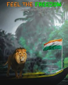 If you looking Republic day Editing Background for photo editing so in this post i am giving you Republic day Editing Background free, Independence Day Images Download, Independence Day Photos, Independence Day Background, Indian Independence Day, 15 August Independence Day, Flag Background, Picsart Background, January Background, Birthday Background