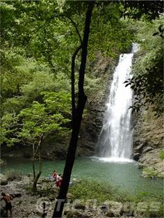 See the rain forrest canopy and waterfalls of Montezuma, Costa Rica...NOT get the revenge.