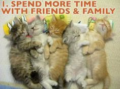 Check out the Most Common New Year's Resolutions as Told by Cats - Cheezburger