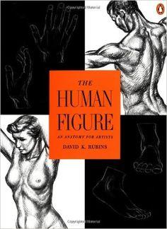 The human figure : an anatomy for artists / David K. Rubins| Penguin books | 1976.  Este libro es una valiosa fuente de consulta rápida, tanto de la construcción como de la apariencia de las figuras del hombre y la mujer.