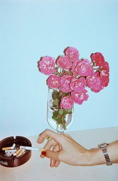 Flowers and vices  by Sumeja, via Flickr