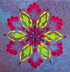 Mandala art - New Flower Mandalas by Kathy Klein – Mandala art Mandala Art, Mandala Flower, Mandalas Painting, Mandalas Drawing, Flower Rangoli, Flower Circle, Flower Petals, Flower Art, Nice Flower