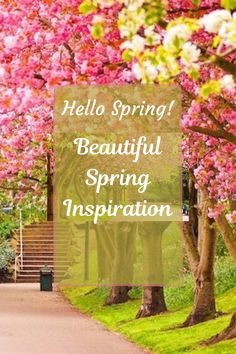 Beautiful spring aesthetic and quotes to welcome spring and celebrate the season! #spring #welcome #aesthetic #springquotes Spring Quotes, Spring Wallpaper, Spring Aesthetic, Welcome Spring, Spring Home Decor, Hello Spring, Spring Flowers, Seasons, Table Decorations