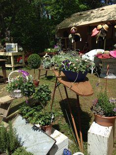 Brimfield Flea Market, Flea Market Finds, Fleas, Plants, Plant, Planting, Planets