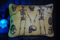 """Skeleton Throw Pillow from $26.00 Anatomy comes to life with this lumbar pillow; custom printed on cotton twill with victorian anatomical charts of the human skeleton.  It features a black, faux suede back, black welt trim and zipper closure. -Optional polyester pillow insert -Optional feather/down pillow insert.  Please allow an additional five days for this option. Material(s): Cover: 100% cotton twill Measurements: 16"""" wide x 12"""" tall"""