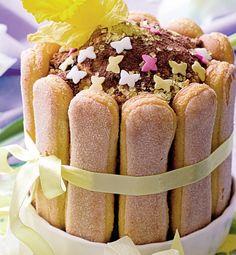 Chocolate Charlotte Seitan, Tzatziki, Frappe, Nutella, Cheesecake, Charlotte, Sweets, Chocolate, Baking