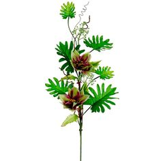 39' Tropical Lantern/ Philodendron Spray Green Burgundy(Pack of 6) >>> Check out this great product.