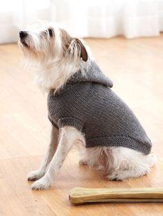 Hoodie Dog Coat | Yarn | Free Knitting Patterns | Crochet Patterns | Yarnspirations