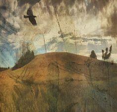 Sarah Jarrett Art