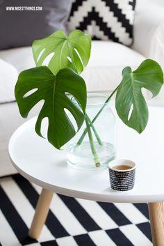 Monstera deliciosa, Tablo Normann Copenhagen, Ikea Stockholm, black white striped rug