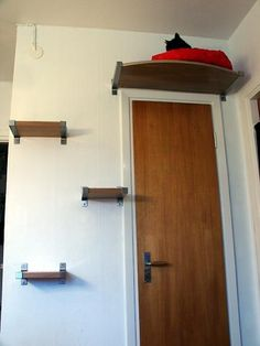 DIY Wall mounted cat bed! Brilliant!    My kitties would adore this!